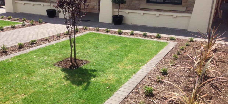 Adelaide Landscape designer